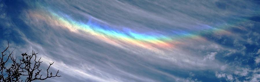 イスラエルの虹